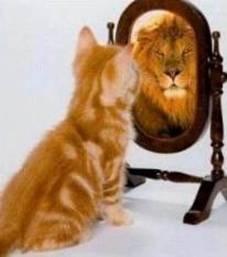 Self-Effacy